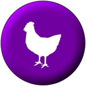مرغ بومی
